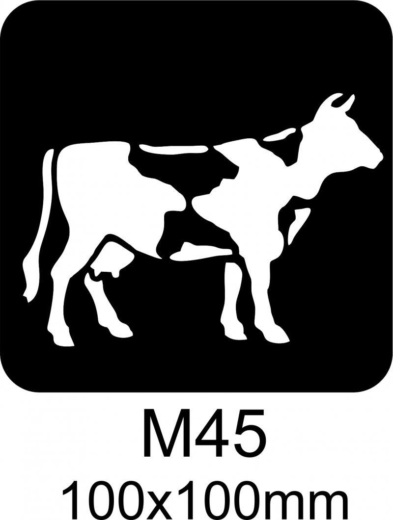 M45 – Stencil